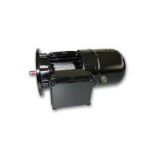 HEW磁阻电动机F级热绝缘系统